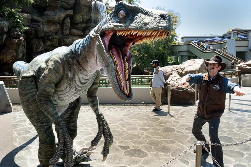 Velociraptor Encounter